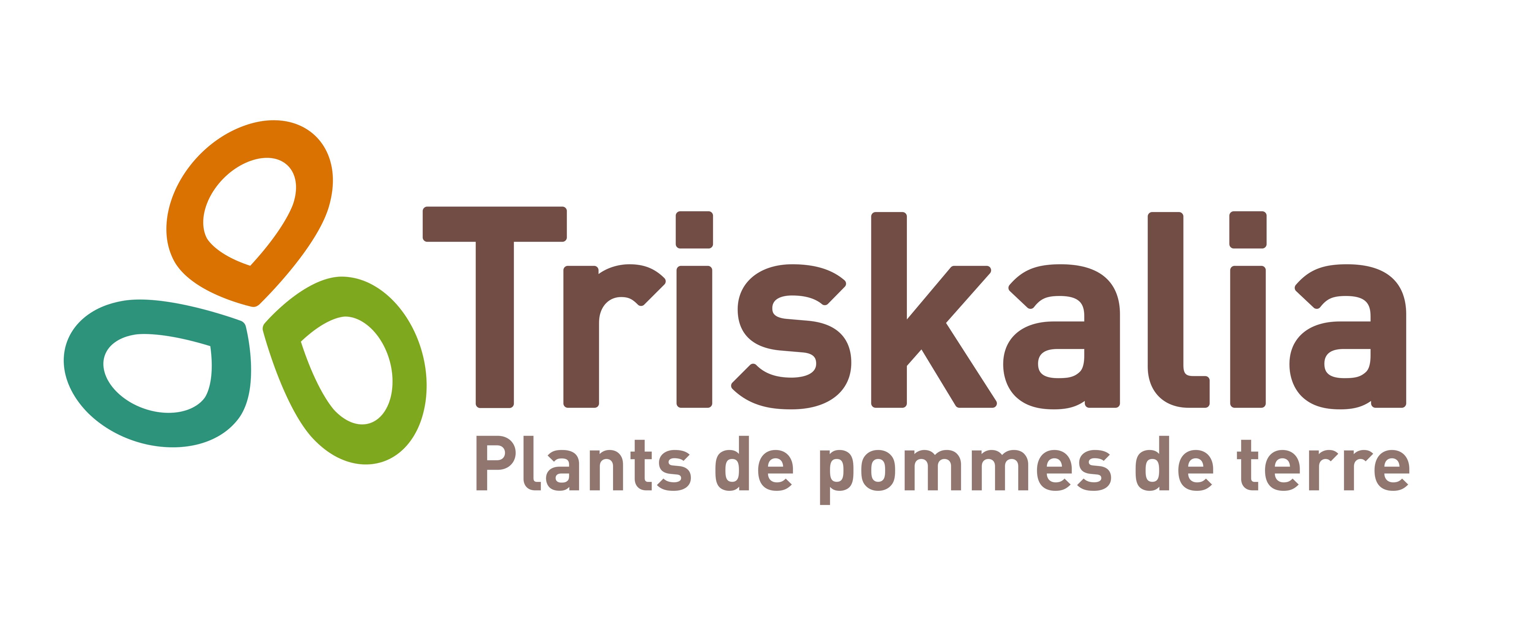 Logo Triskalia Plants de Pomme de terre