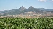 paysage variété pomme de terre algerie montagnes