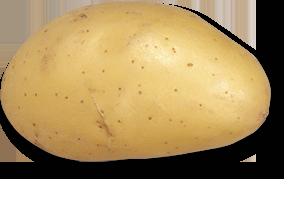 charlene triskalia seed potatoes