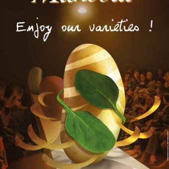 Mandola, a realistic alternative to Monalisa
