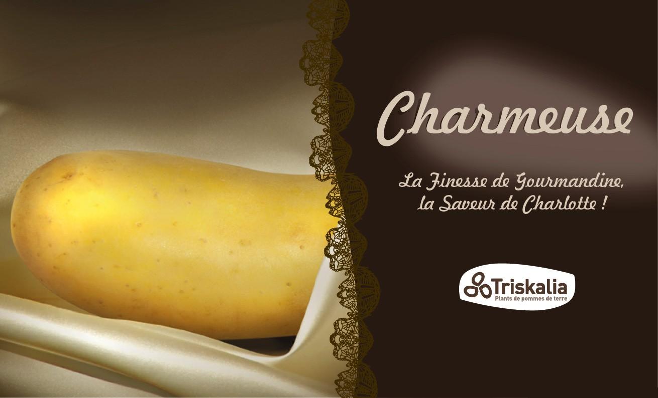 charmeuse_visuel_462-280_website